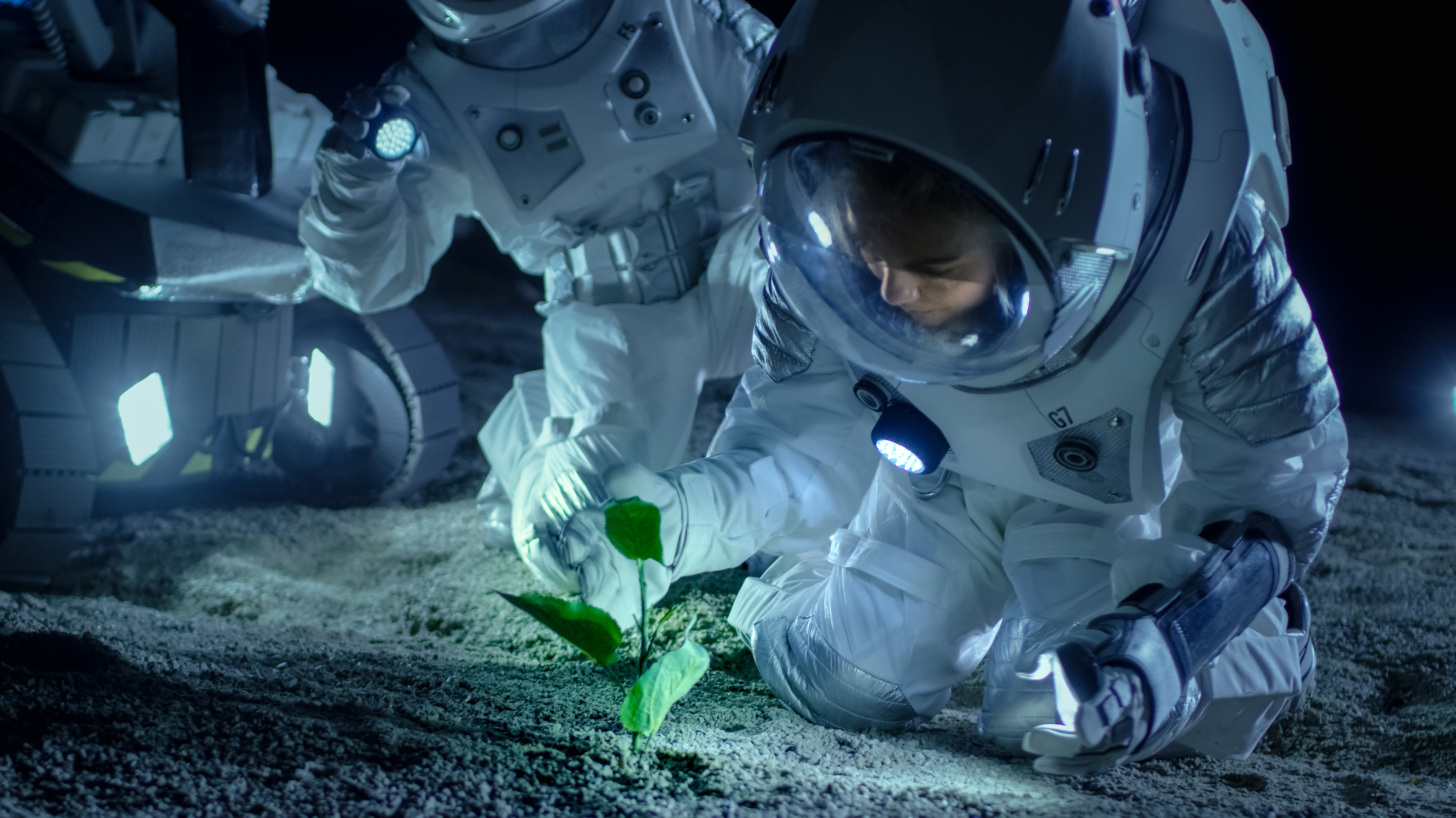 astronaut examining plant
