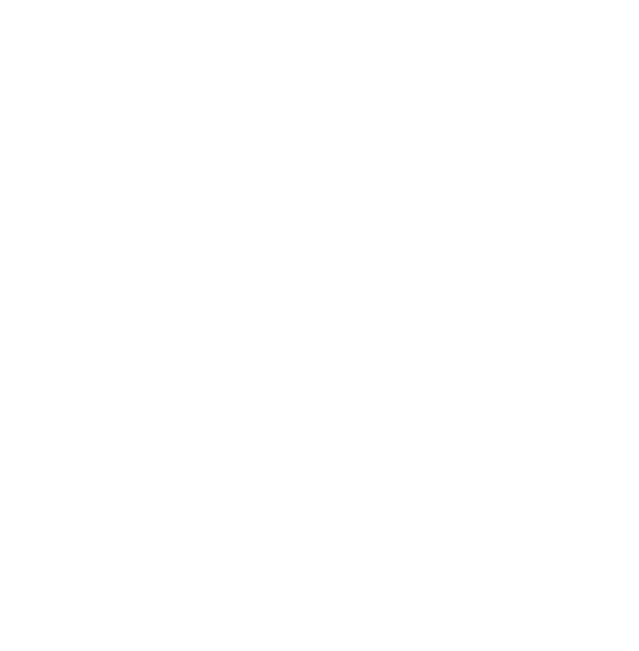 Disasters lightning logo