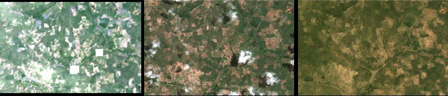 three satellite images of farmland in Mali