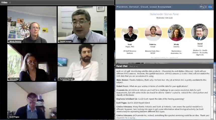 screenshot of panel in virtual meeting