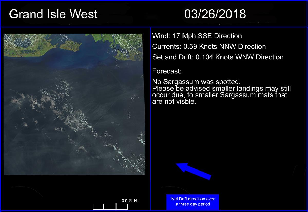 An example of a Sargassum forecast for coastal Louisiana.