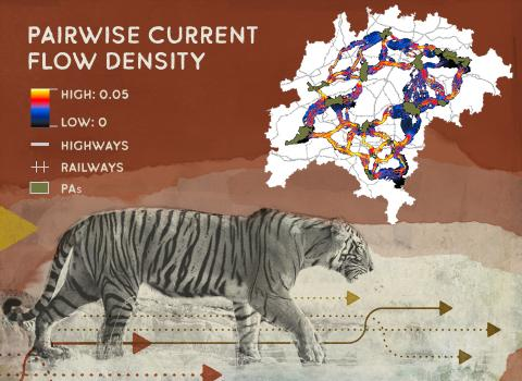 Image of Pairwise Current Flow Density map