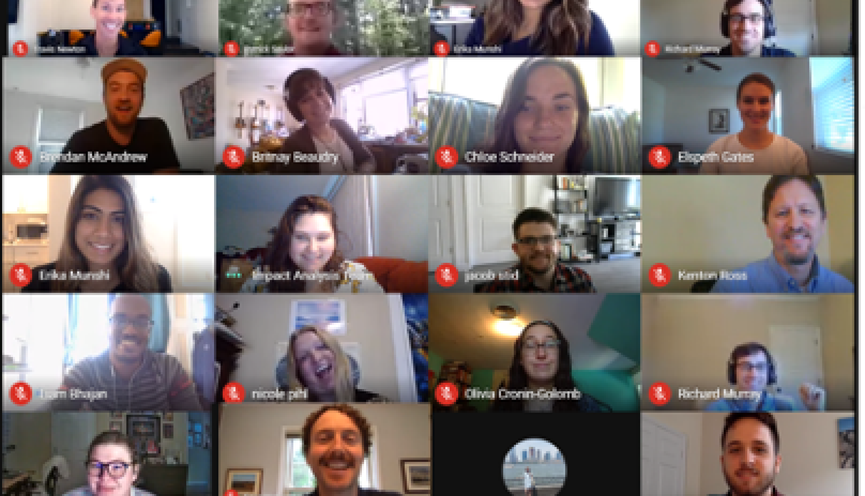 Screenshot of the DEVELOP participants in a workshop