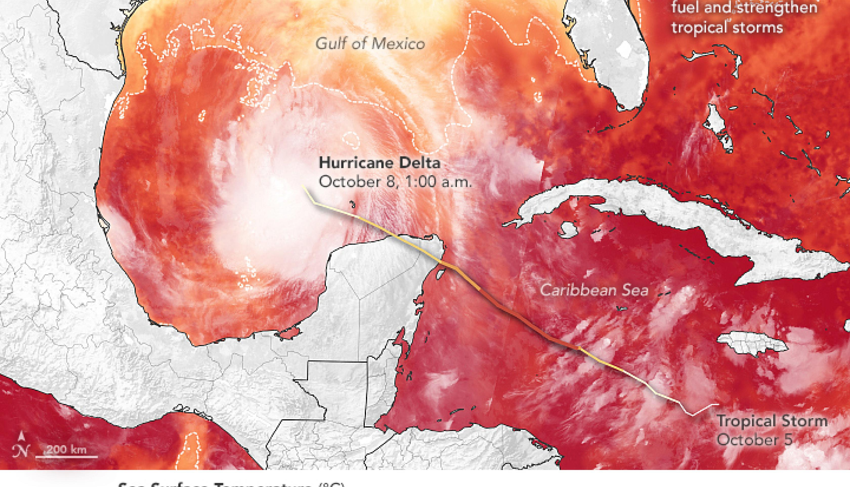 This map shows the track of Hurricane Delta between October 5 and October 8 overlaid on a map of sea surface temperatures (SSTs) in the Gulf of Mexico as measured on October 6, 2020. The SST data comes from the Multiscale Ultrahigh Resolution Sea Surface Temperature (MUR SST) project, based at NASA's Jet Propulsion Laboratory. MUR SST blends measurements of sea surface temperatures from multiple NASA, NOAA, and international satellites, as well as ship and buoy observations. The brightness temperature image