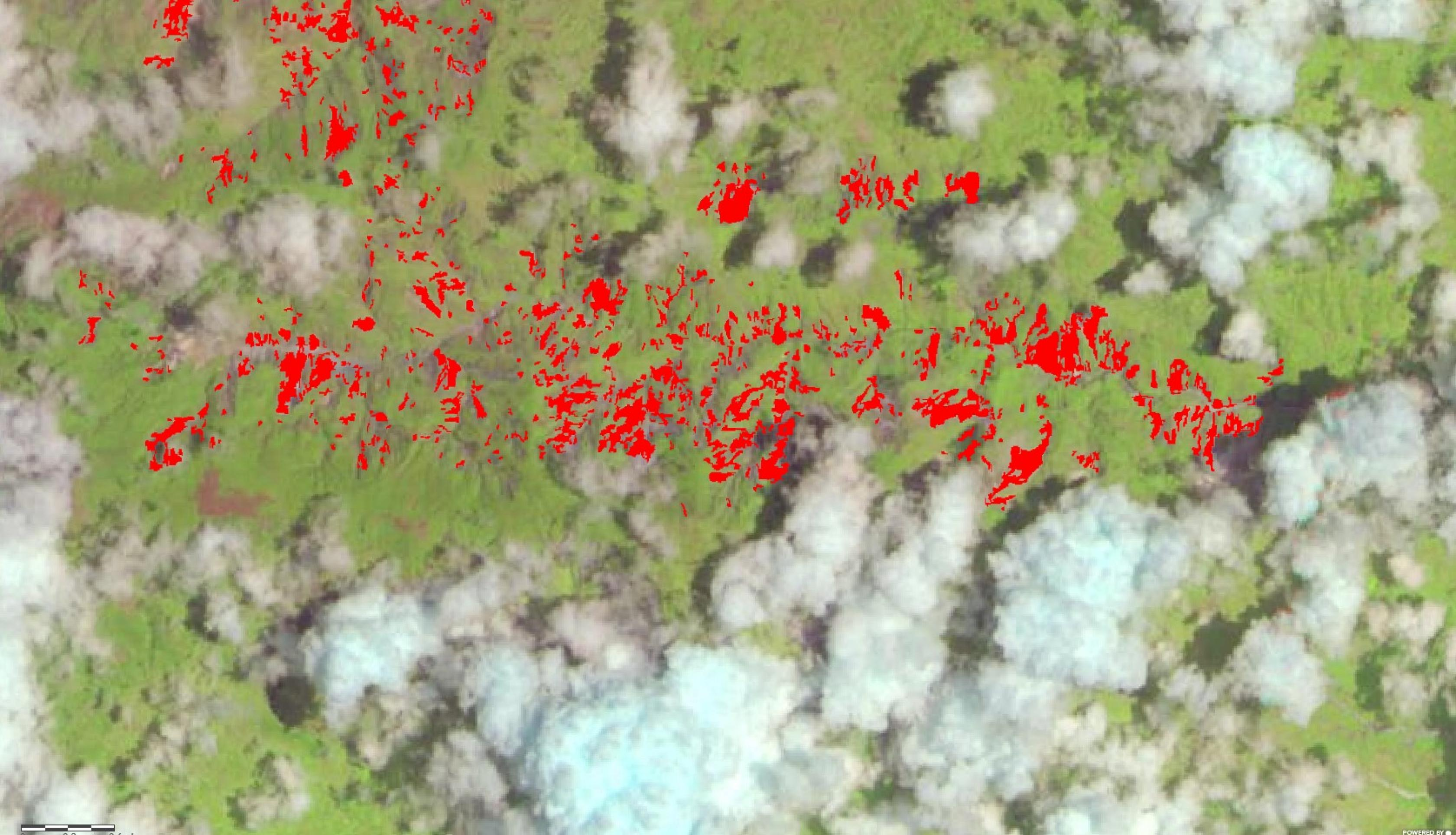 """The NASA Goddard Space Flight Center landslides team, with support from the A.37 ROSES research project """"Enabling Landslide Disaster Risk Reduction and Response Throughout the Disaster Life Cycle With a Multi-scale Toolbox,"""" has mapped landslides in the region using the Semi-Automatic Landslide Detection (SALaD) system. SALaD uses optical satellite imagery and machine learning to identify areas potentially affected by landslides. In conjunction with the other data available, these provide additional awarene"""