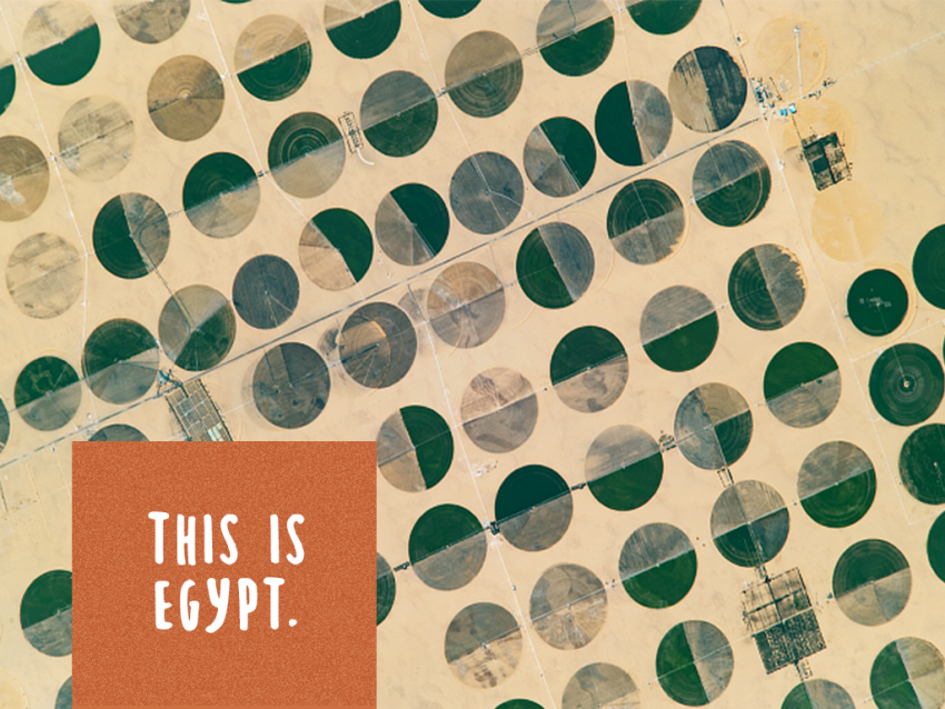 "Satellite image of crop circles in Egypt with text ""This is Egypt"" on it"
