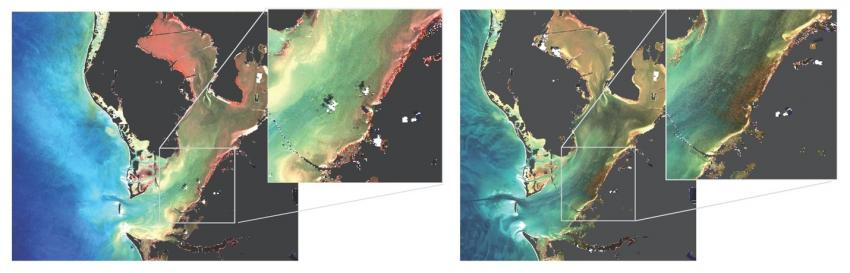 Satellite imagery of Tampa Bay showing the discharge area.