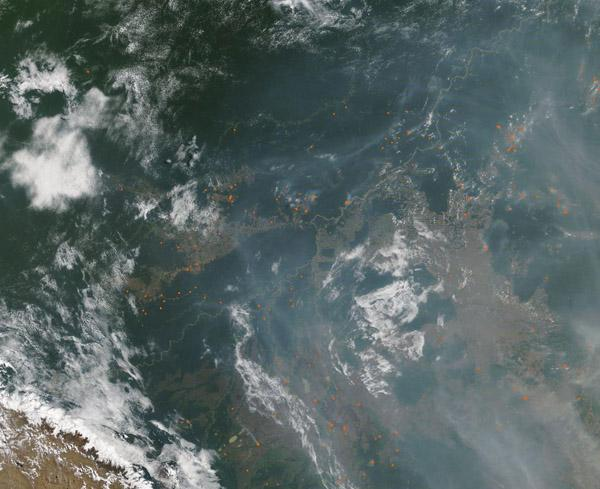 On September 3, the Moderate Resolution Imaging Spectroradiometer (MODIS) on NASA's Terra satellite acquired this true-color image of smoke and fire near the border of Bolivia and Brazil. Numerous hot-spots, shown in red, mark areas where the thermal bands on the instrument detected high temperatures. When combined with typical smoke, as in this image, such hot spots mark actively burning fire. Credit: MODIS Land Rapid Response Team, NASA GSFC