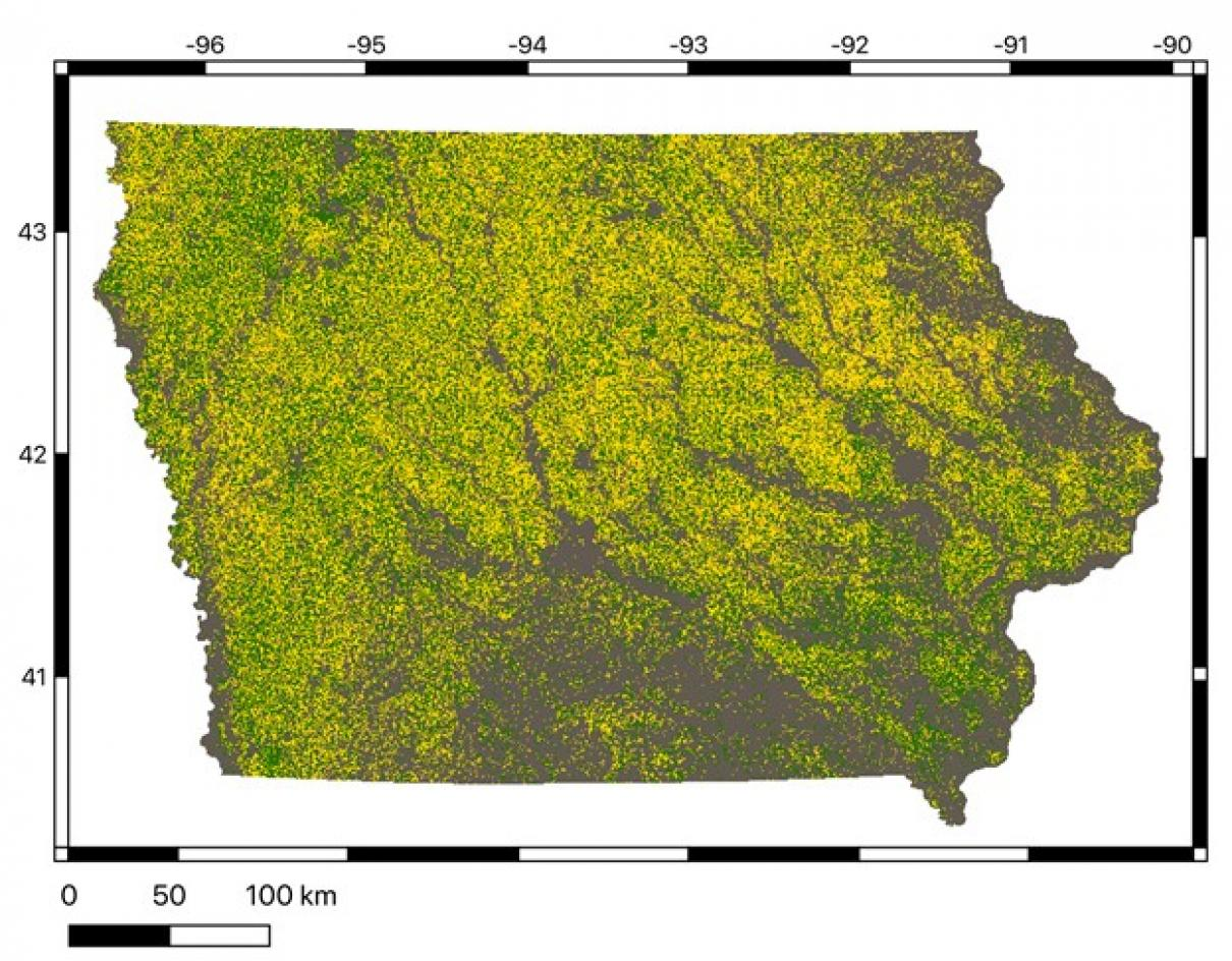 machine-learning image of corn, soybeans and other crops