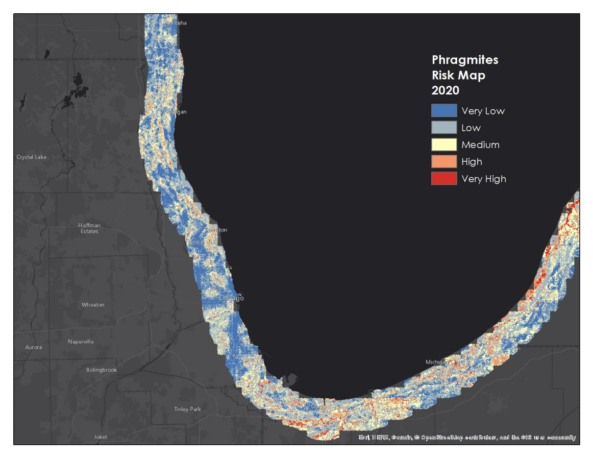 Risk map of Phragmites australis within a 6-mile buffer of southern Lake Michigan for the year 2020.